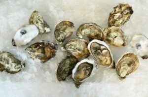 Open and close oysters on ice