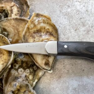 Professional oyster shucking knife with oyster