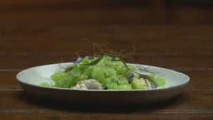 Picture of Oyster with fennel and cucumber-pernodgranite